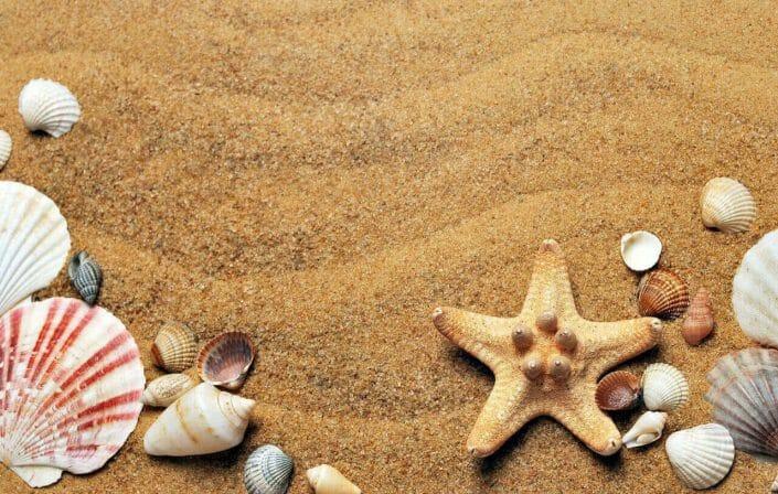 Marmaris tatilinde yapılabilecek etkinlikler